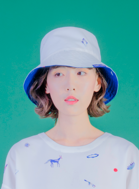 藍白蜥蜴雙面印花帽