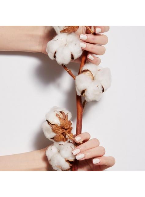 棉花 Cotton