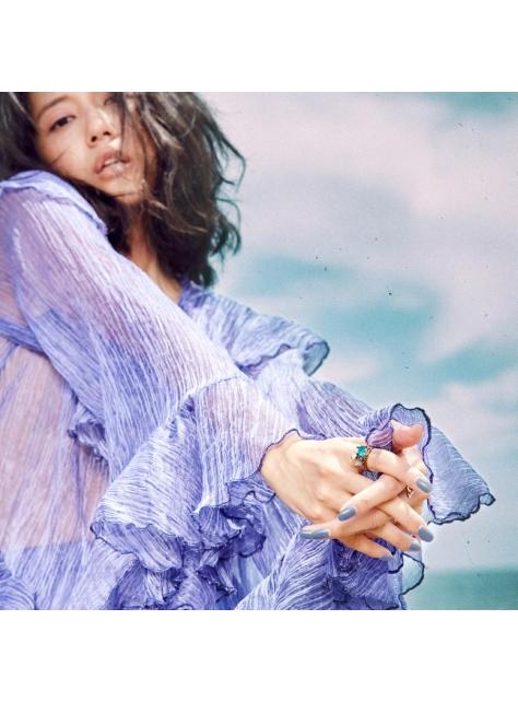 藍繡球 Blue Hydrangea