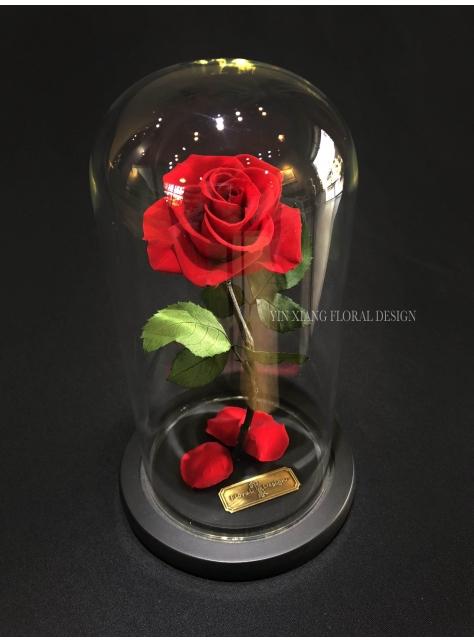 經典不敗玫瑰 永生花 M 印象FloralDesign 出品