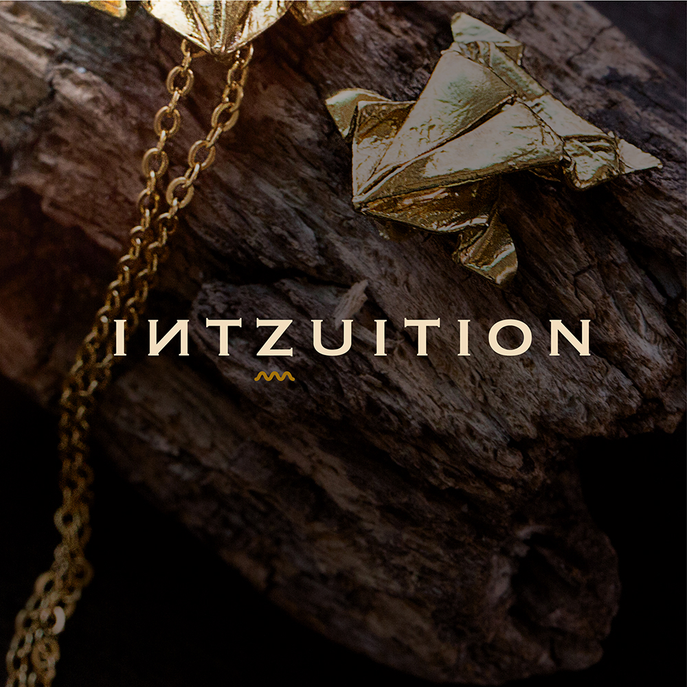 INTZUITION